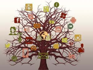 tree-1574165_640
